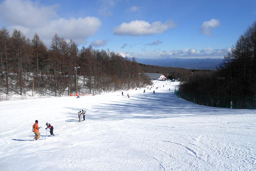 長野県 小海リエックス・スキーバレー リフト1日券 ペア5組10名様