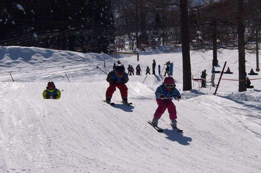 ジュニア向けのスキークロスで上達間違いなし!