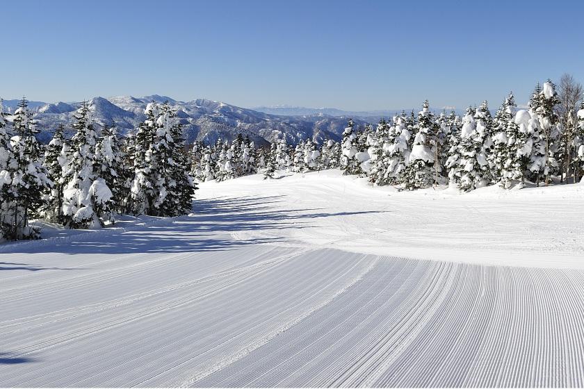 志賀高原スキーエリア(18スキー場) 全山共通1日券 ペア5組10名様