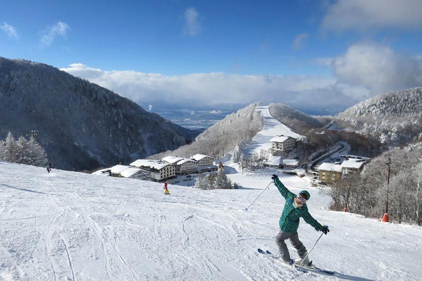 長野県 志賀高原スキーエリア(18 スキー場)ペア宿泊無料券 1組2名様