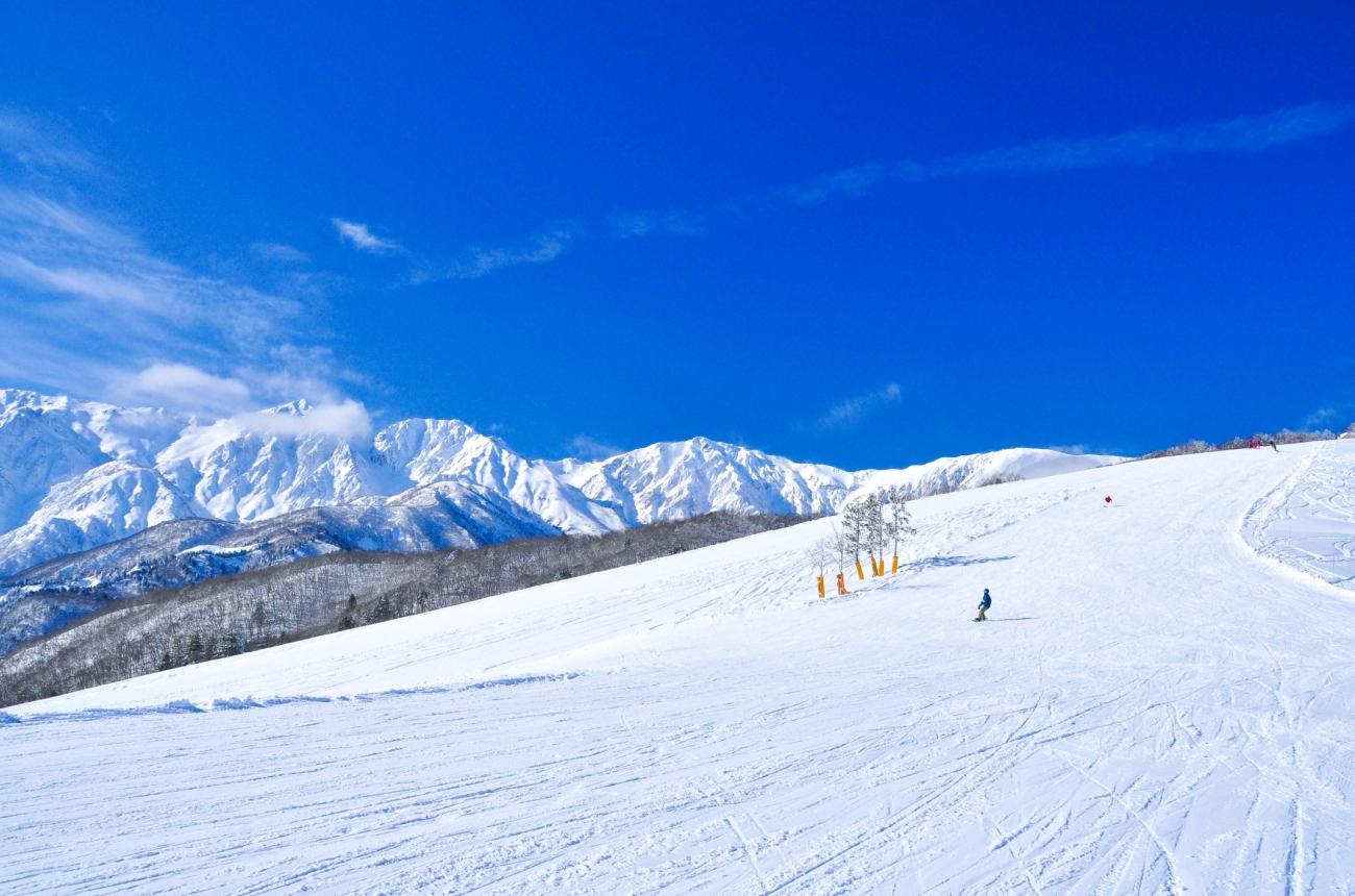 白馬岩岳スノーフィールド